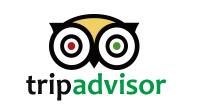 tripadvisor推薦の店